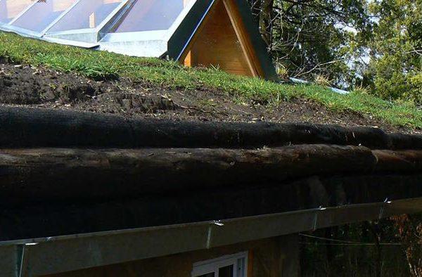 Detalles estructurales del techo vivo (marzo 2014)