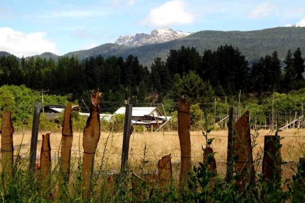 Vista trasera – oeste, sin los palos del antiguo lupular (enero 2015)